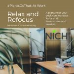 A plant near your desk can help you relax and refocus. #PlantsDoThat At Work. Learn more at ConsumerHort.org